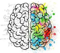 brain-2062055_1920.jpg