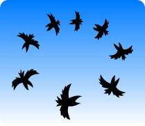 flock-154442 - Copy