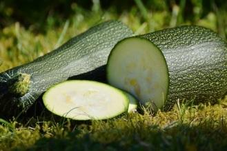 zucchini-1659094_1280 - Copy